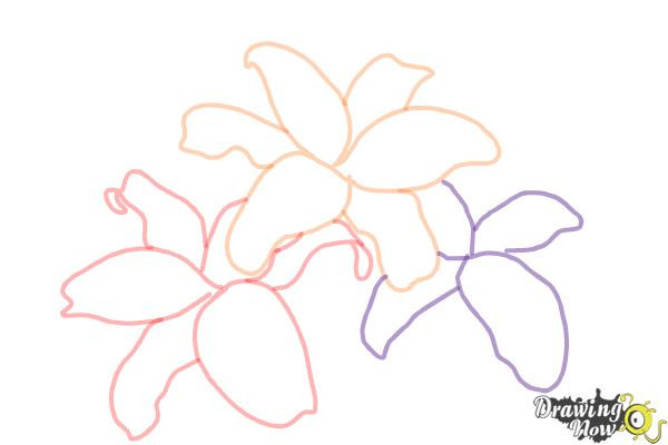 How to Draw Lillies - Step 5
