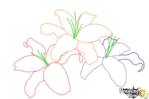 How to Draw Lillies - Step 6