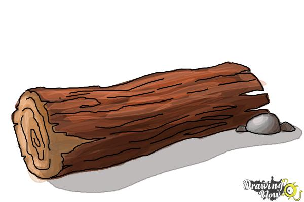 How to Draw a Log - Step 9
