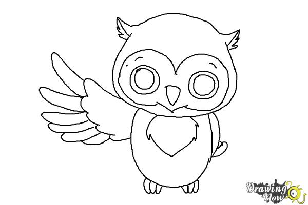 How to draw a cute owl drawingnow for Draw the owl