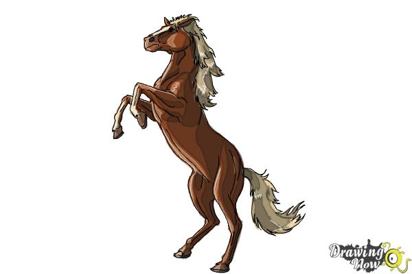 How to Draw a Horse Body - Step 10