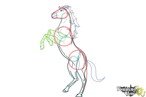 How to Draw a Horse Body - DrawingNow