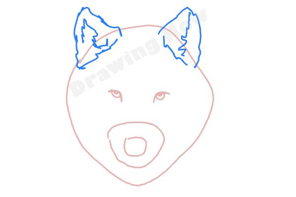 Drawing Wolfman Face