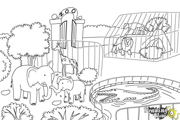 How to Draw a Zoo - Step 10