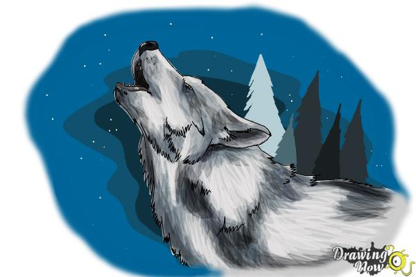 How To Draw A Wolf Howling Drawingnow