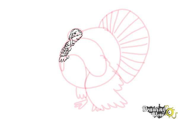 How to Draw a Turkey Step by Step - Step 5