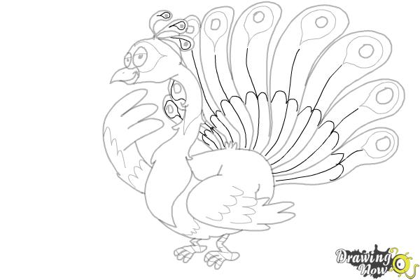 how to draw a cartoon peacock drawingnow how to draw a cartoon peacock drawingnow