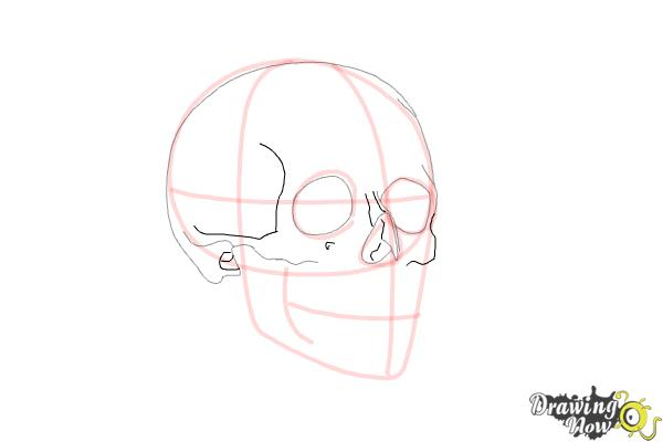 How to Draw a Skull Step by Step - Step 6