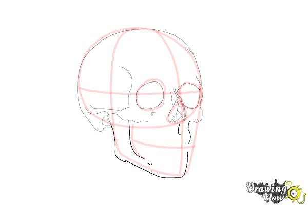 How to Draw a Skull Step by Step - Step 7