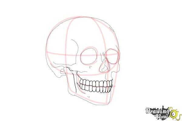 How to Draw a Skull Step by Step - Step 8