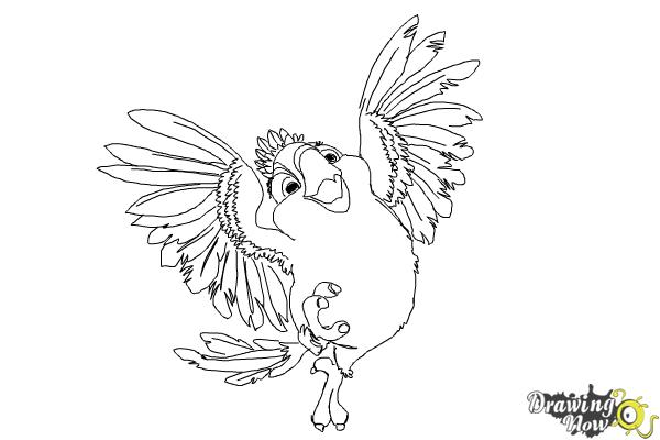 How to Draw Carla from Rio 2 - Step 10