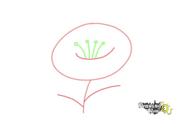 How to Draw a Flower Step by Step - Step 2