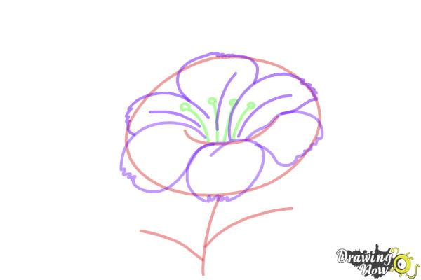 How to draw a flower step by step drawingnow how to draw a flower step by step step 4 mightylinksfo