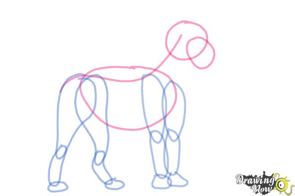 How to Draw a Lion Step by Step - Step 4