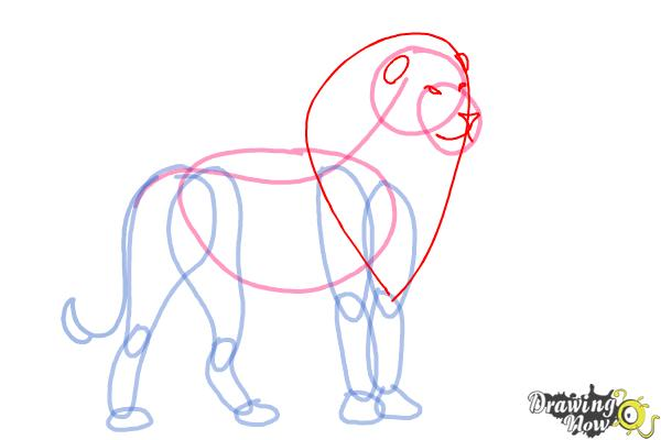 How to Draw a Lion Step by Step - Step 5