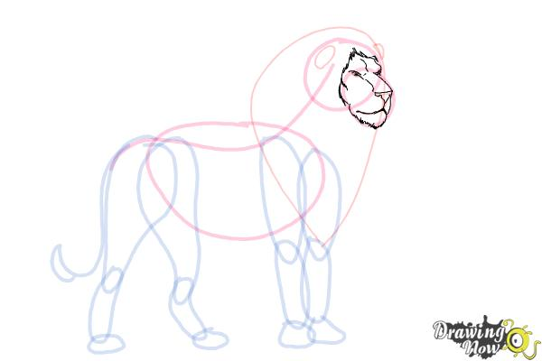 How to Draw a Lion Step by Step - Step 6