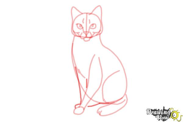 How to Draw Hawkfrost from Warrior Cats - Step 10
