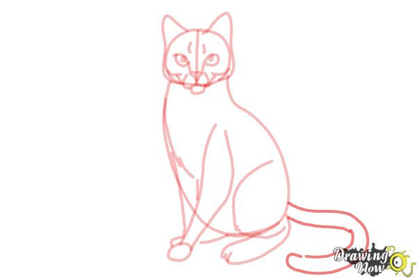 How to Draw Hawkfrost from Warrior Cats - Step 11