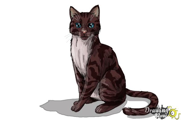 How to Draw Hawkfrost from Warrior Cats - Step 14