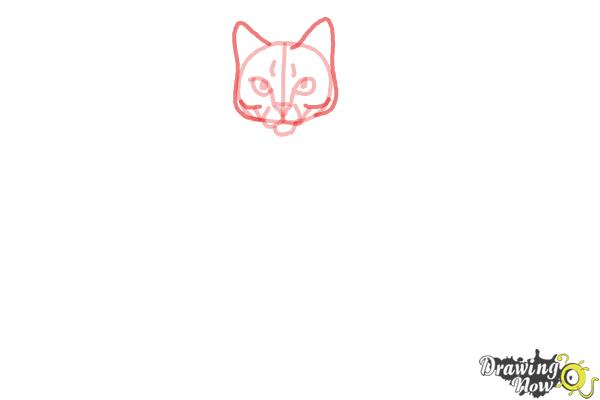 How to Draw Hawkfrost from Warrior Cats - Step 6