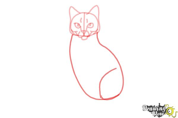 How to Draw Hawkfrost from Warrior Cats - Step 7