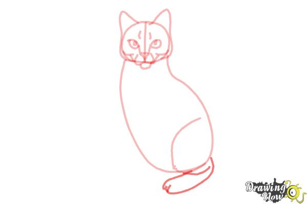 How to Draw Hawkfrost from Warrior Cats - Step 8
