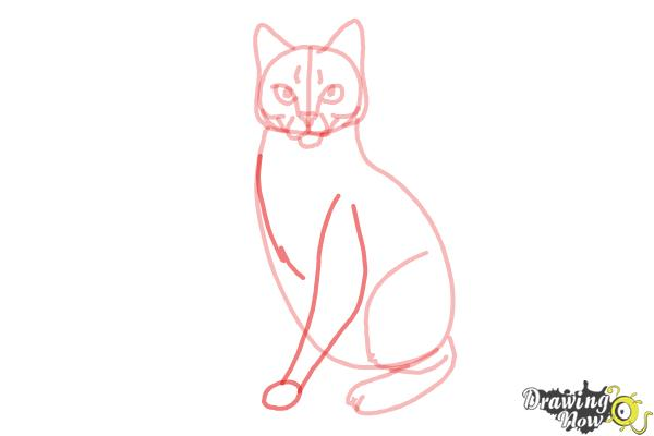 How to Draw Hawkfrost from Warrior Cats - Step 9