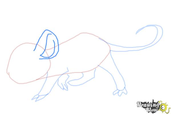 How to Draw an Anime Rat - Step 6