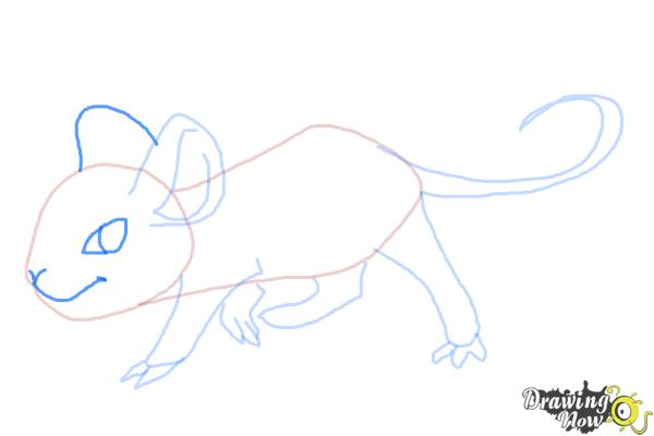 How to Draw an Anime Rat - Step 7