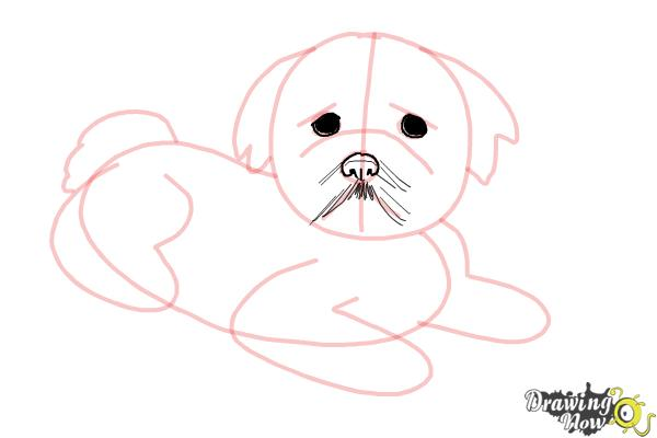 How to Draw a Furry Dog - Step 6