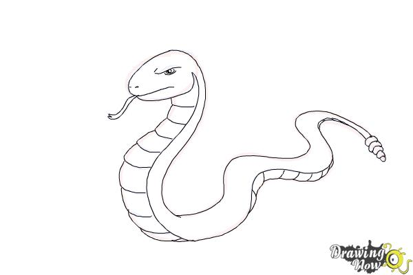 How to Draw a Snake Step by Step - Step 11