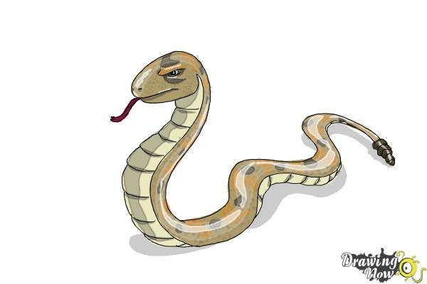How to Draw a Snake Step by Step - Step 12