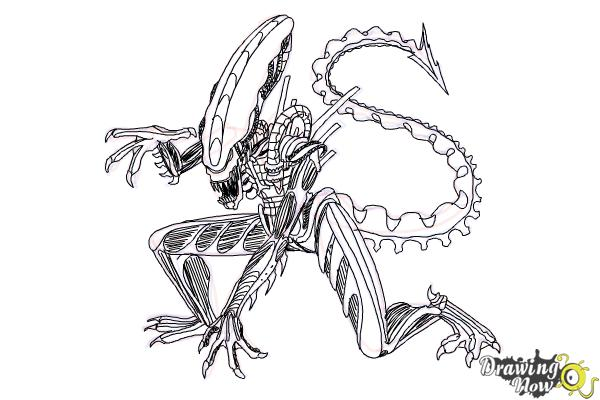 How to Draw a Xenomorph - Step 22