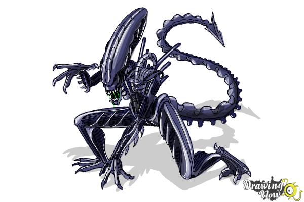 How to Draw a Xenomorph - Step 23