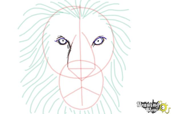 How to Draw a Lion Face - Step 6