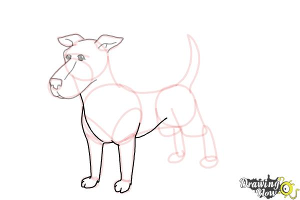 How to Draw a Dog Step by Step - Step 8