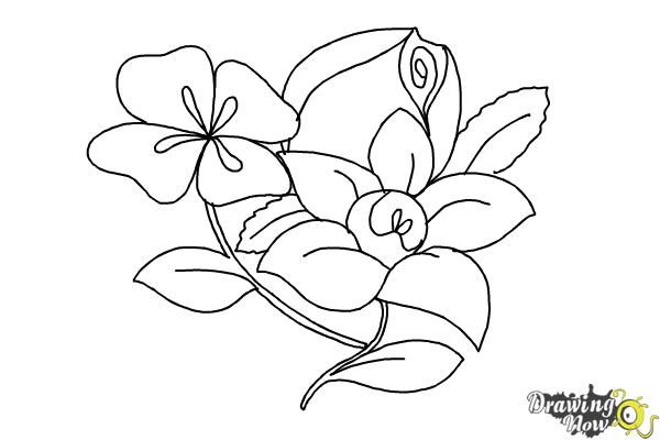 How to draw flowers step by step step 12