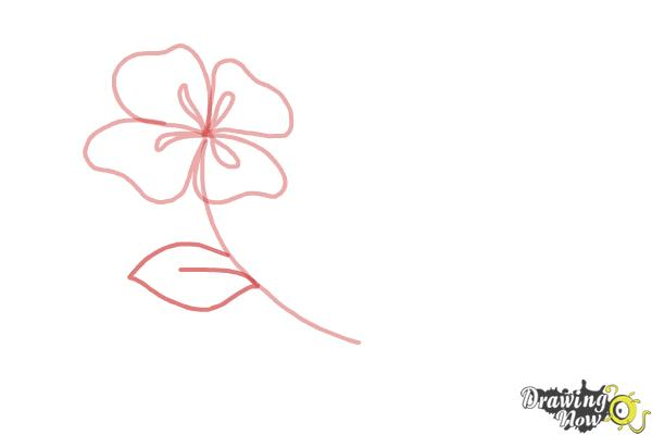 How To Draw Flowers Step By Step Drawingnow