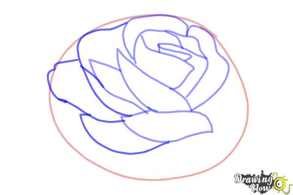 How to Draw a Rose In Pencil - Step 5
