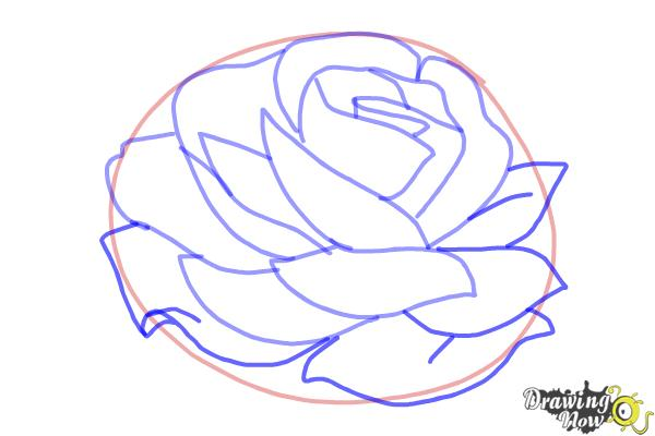 How to Draw a Rose In Pencil - Step 6