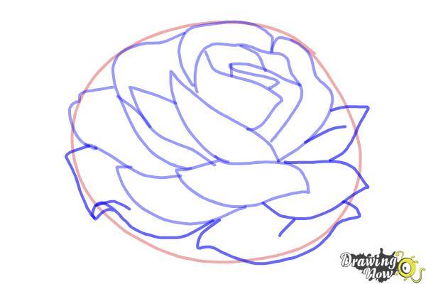 Rose Drawings In Pencil Step By Step