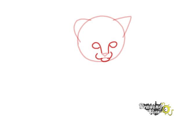 How to Draw a Kitten Step by Step - Step 3