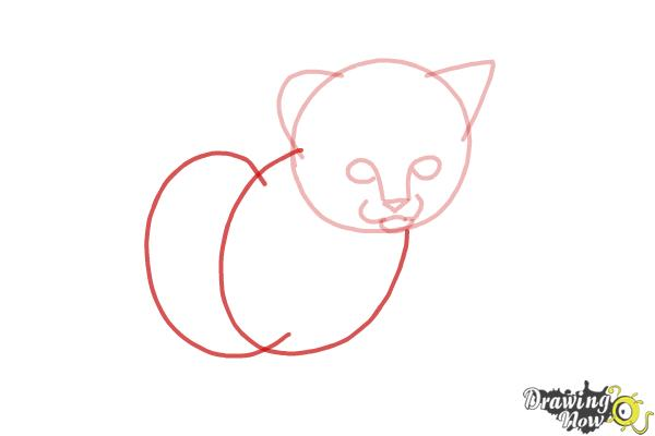 How to Draw a Kitten Step by Step - Step 4