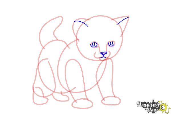 How to Draw a Kitten Step by Step - Step 8