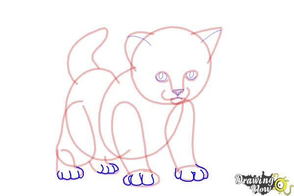 How to Draw a Kitten Step by Step | DrawingNow