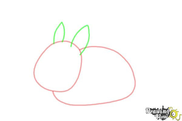 How to Draw a Bunny Step by Step - Step 3