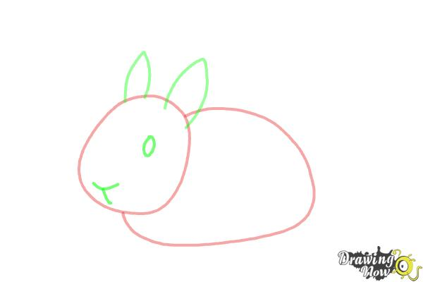 How to Draw a Bunny Step by Step - Step 4