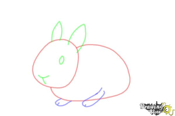How to Draw a Bunny Step by Step - Step 5