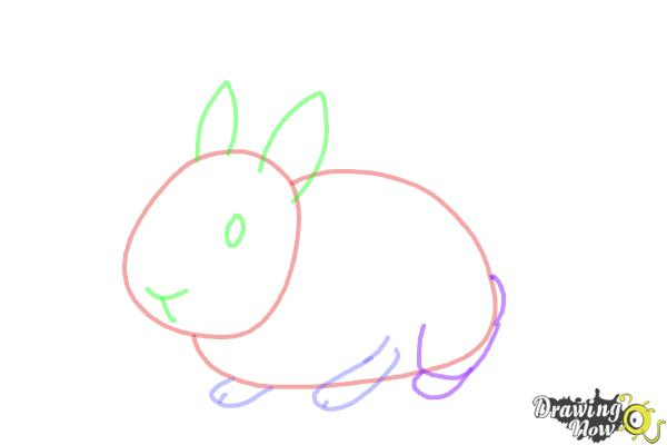 How To Draw A Bunny Step By Step - DrawingNow