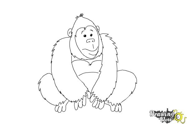 How to Draw a Gorilla For Kids - Step 7